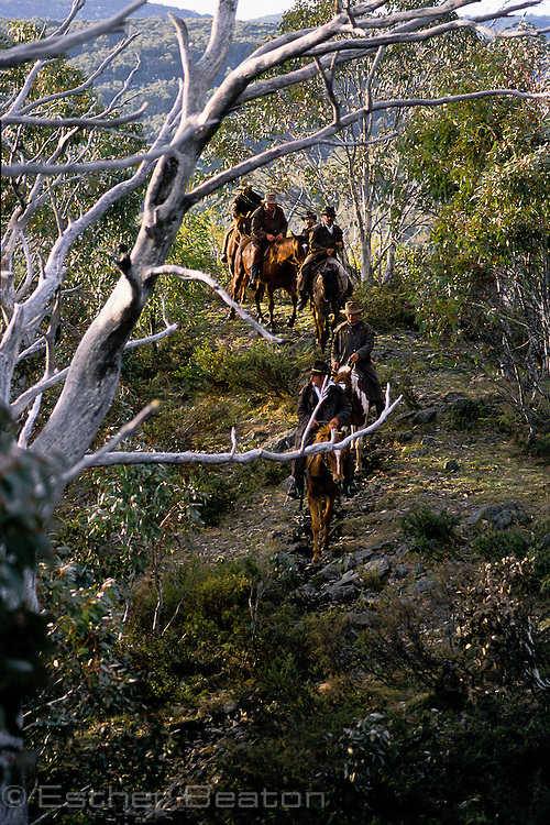 Stockmen searching for brumbies in the High Country. Snowy Mountains, near Mt Buller, Victoria