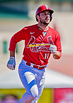 29 February 2020: St. Louis Cardinals infielder Paul DeJong rounds the bases after hitting a solo home run during a Spring Training game against the Washington Nationals at Roger Dean Stadium in Jupiter, Florida. The Cardinals defeated the Nationals 6-3 in Grapefruit League play. Mandatory Credit: Ed Wolfstein Photo *** RAW (NEF) Image File Available ***