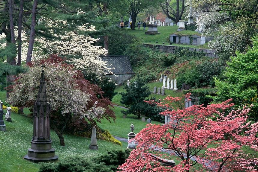 Mount Auburn cemetery Cambridge MA