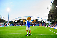 Huddersfield Town mascot Terry the Terrier during the game<br /> <br /> Photographer Chris Vaughan/CameraSport<br /> <br /> The Carabao Cup First Round - Huddersfield Town v Lincoln City - Tuesday 13th August 2019 - John Smith's Stadium - Huddersfield<br />  <br /> World Copyright © 2019 CameraSport. All rights reserved. 43 Linden Ave. Countesthorpe. Leicester. England. LE8 5PG - Tel: +44 (0) 116 277 4147 - admin@camerasport.com - www.camerasport.com