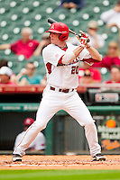 Matt Vinson #20 of the Arkansas Razorbacks at bat against the Texas Tech Red Raiders at Minute Maid Park on March 2, 2012 in Houston, Texas.  The Razorbacks defeated the Red Raiders 3-1. (Brian Westerholt/Four Seam Images)