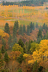 Town of Mosier in Autumn, Oregon