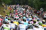 The peloton climb during Stage 13 of the 2018 Tour de France running 169.5km from Bourg d'Oisans to Valence, France. 20th July 2018. <br /> Picture: ASO/Pauline Ballet | Cyclefile<br /> All photos usage must carry mandatory copyright credit (© Cyclefile | ASO/Pauline Ballet)