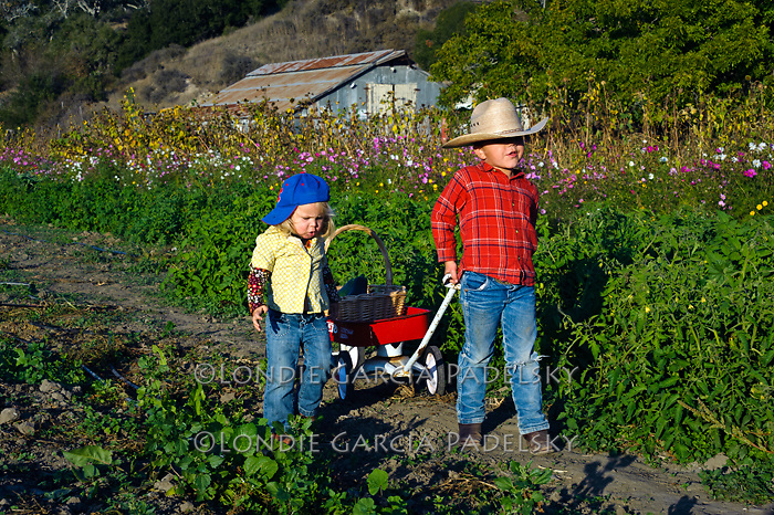 Evan and sister Lyla in the garden at SLO Creek Farms in Avila Valley, Central Coast, California.(Awesome possum outing)