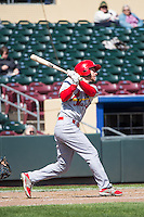 Ty Kelly (19) of the Memphis Redbirds at bat against the Omaha Storm Chasers in Pacific Coast League action at Werner Park on April 22, 2015 in Papillion, Nebraska.  (Stephen Smith/Four Seam Images)