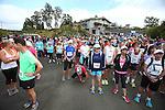 2014 Run Mahana , Nelson New Zealand,Sunday 30th November 2014 ,Evan Barnes / Shuttersport.