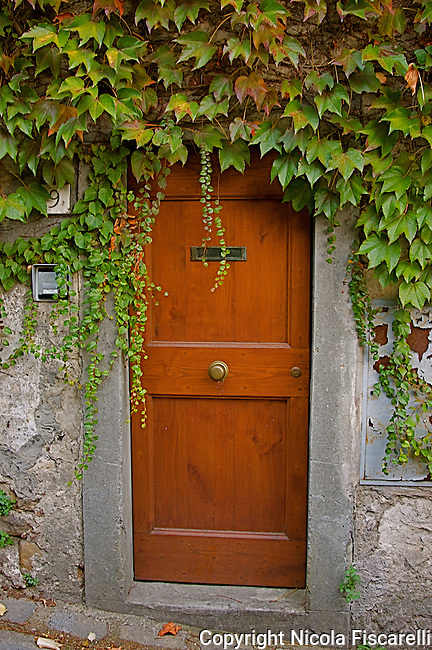 Tuscan door with ivy.