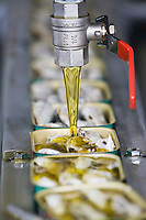 Europe/France/Bretagne/29/Finistère/ Concarneau:  Conserverie de sardines,  Gonidec - Remplissage automatique  des boites d'huile