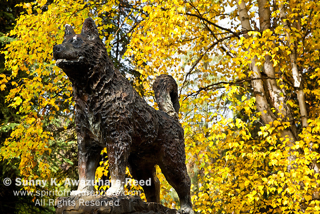 Statue of Balto in fall colors, Chena Hot Springs Kennel, Fairbanks, Interior Alaska, Autumn.