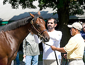 Sheikh Mohammed inspects a yearling at the Lane's End consignment.