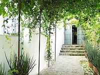 A paved entrance pathway is shaded by climbing plants growing over a pergola. Stone steps lead up to the front door.