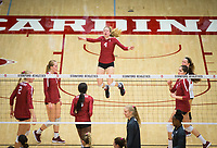 STANFORD, CA - November 2, 2018: Kathryn Plummer, Jenna Gray, Tami Alade, Meghan McClure, Audriana Fitzmorris, Morgan Hentz at Maples Pavilion. No. 1 Stanford Cardinal defeated No. 15 Colorado Buffaloes 3-2.