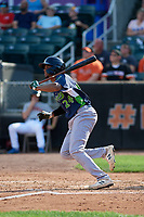Vermont Lake Monsters Kevin Richards (24) bats during a NY-Penn League game against the Aberdeen IronBirds on August 18, 2019 at Leidos Field at Ripken Stadium in Aberdeen, Maryland.  Vermont defeated Aberdeen 6-5.  (Mike Janes/Four Seam Images)