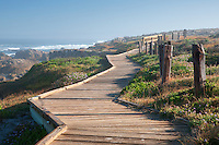 Wooden boardwalk and ocean on 17 Mile Drive. Pebble Beach, California