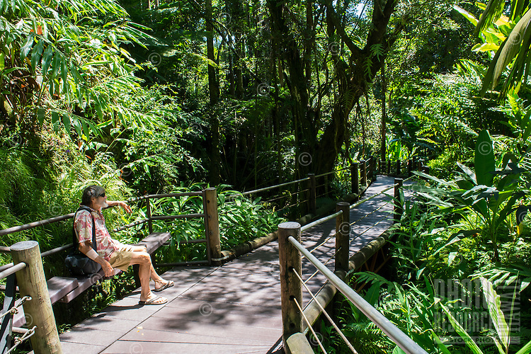 A visitor relaxes in the shade on the boardwalk at Hawaii Tropical Botanical Garden in Papa'ikou near Hilo, Big Island of Hawai'i.