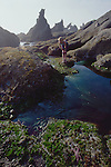 Olympic National Park, Shi Shi Beach, Point of the Arches, Washington State, Pacific Northwest, woman exploring tide pools Pacific Ocean, Northwest coast, Olympic Peninsula, North America, USA,.