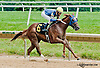 Blushing Touch winning at Delaware Park on 7/17/13