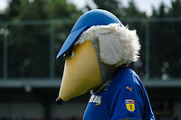 AFC Wimbledon mascot Haydon during AFC Wimbledon vs Scunthorpe United, Sky Bet EFL League 1 Football at the Cherry Red Records Stadium on 15th September 2018