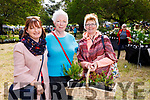 Kerry Lane (Ballybunion), Mary O'Sullivan (Lisselton) and Noreen Bambury (Ballybunion), pictured at Glin Castle Rare and Special Plant Fair, in Limerick, on Sunday last.