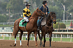 ARCADIA, CA FEBRUARY 10: #5 Kanthaka, ridden by Flavien Prat, in the post parade of the San Vicente Stakes (Grade ll) on February 10, 2018 at Santa Anita Park in Arcadia, CA. (Photo by Casey Phillips/ Eclipse Sportswire/ Getty Images)