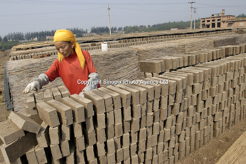 Zhao Guiyun, 35, from rural Chende, Hebei province works in a brickkiln in Bazhou, Hebei province, China. She gets about US$2 per day as payment..04-SEP-04