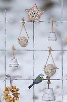 Blaumeise, Futtergitter für Vögel, Vogelfutter-Spalier, Vogelfutter-Gitter, Selbstgemachtes Vogelfutter, Vogelfütterung, Fütterung, Fettfuttermischung, Fettfutter, Meisenknödel, Erdnusskette, Erdnüsse, Erdnusskette, Erdnussring, Erdnuß, Vogelfutterspalier, Vogelfuttergitter, Winterfütterung, Blau-Meise, Meise, Meisen, Cyanistes caeruleus, Parus caeruleus, blue tit, bird's feeding, La Mésange bleue. Adventskalender für Vögel, Advent, Weihnachten für Vögel