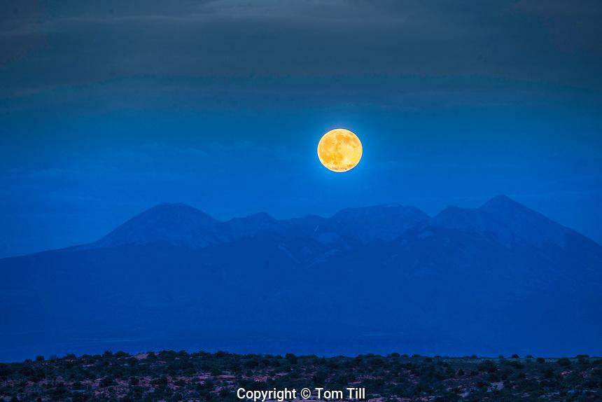 Moonrise over the La Sal Mountains,  Manti La Sal National Forest, Utah