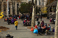 People play cards at a park at Manhattan's Chinatown in New York, Nov 11, 2013. VIEWpress/Eduardo Munoz Alvarez