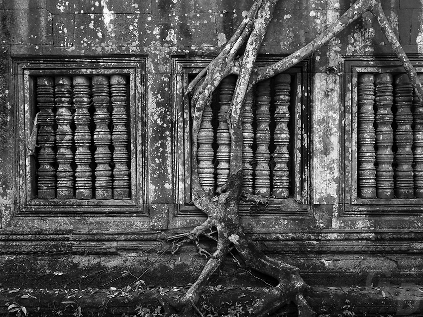 Beng Mealea was built as aHindutemple, but some carvings depictBuddhistmotifs.Its primary material issandstoneand it is largely unrestored, with trees and thick brush thriving amidst its towers and courtyards and many of its stones lying in great heaps. For years it was difficult to reach, but a road recently built to the temple complex ofKoh Kerpasses Beng Mealea and more visitors are coming to the site, as it is 77km fromSiem Reapby road.<br /> <br /> The history of the temple is unknown and it can be dated only by its architectural style, identical to Angkor Wat, so scholars assumed it was built during the reign of kingSuryavarman IIin the early 12th century. Smaller in size thanAngkor Wat, the king's main monument, Beng Mealea nonetheless ranks among theKhmer empire's larger temples: the gallery which forms the outer enclosure of the temple is 181m by 152m.It was the center of a town, surrounded by a moat 1025m by 875m large and 45m wide.