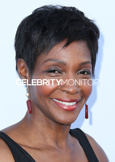 SANTA MONICA, CA, USA - JUNE 11: Roshumba Williams at the Pathway To The Cures For Breast Cancer: A Fundraiser Benefiting Susan G. Komen held at the Barker Hangar on June 11, 2014 in Santa Monica, California, United States. (Photo by Xavier Collin/Celebrity Monitor)