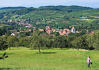 Germany, Baden-Wuerttemberg, Markgraefler Land, Obereggenen