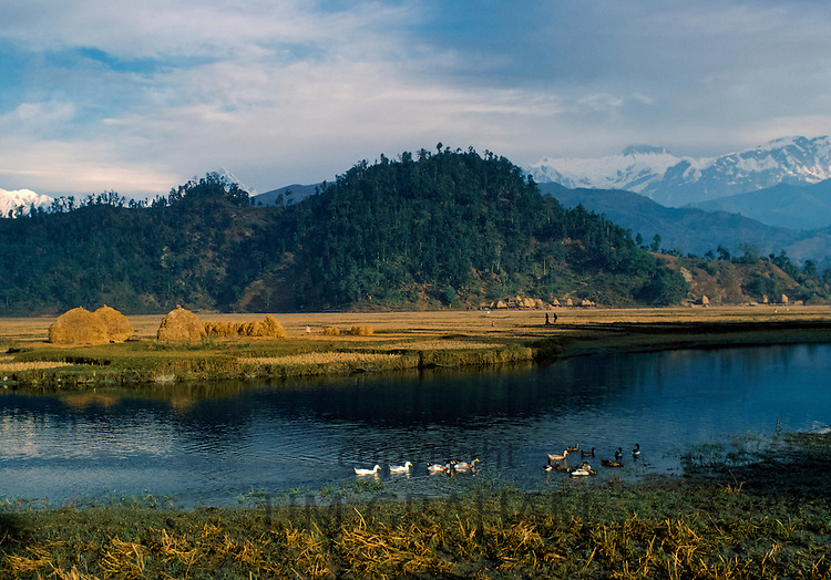 Foothills of Himalayas near Pokhara in Nepal. Annapurna mountain range in the background
