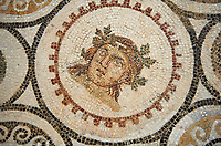 Picture of a Roman mosaics design, from the ancient Roman city of Thysdrus, Bir Zid area. 3rd century AD. El Djem Archaeological Museum, El Djem, Tunisia.