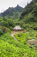 Limahuli Garden and Preserve on Kauai