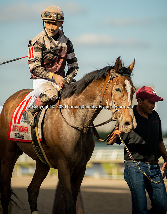 January 25, 2020: #11, Pink Sands and Jockey Jose Ortiz with the Inside Information for Trainer Shug McGaughey at Gulfstream Park on January 25, 2020 in Hallandale Beach, FL. (Photo by Carson Dennis/Eclipse Sportswire/CSM)