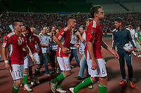 Members of team Hungary celebrate a goal during the UEFA EURO 2012 Group E qualifier Hungary playing against Sweden in Budapest, Hungary on September 02, 2011. ATTILA VOLGYI