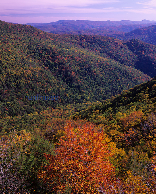 Otter Creek Wilderness from Table Rock, Monongahela National Forest, West Virginia, USA.