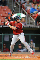 Lehigh Valley IronPigs first baseman Darin Ruf #15 during the second game of a double header against the Buffalo Bisons on June 7, 2013 at Coca-Cola Field in Buffalo, New York.  Lehigh Valley defeated Buffalo 4-0.  (Mike Janes/Four Seam Images)