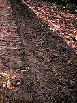 Off-road 4wd tire tracks  - environmental damage