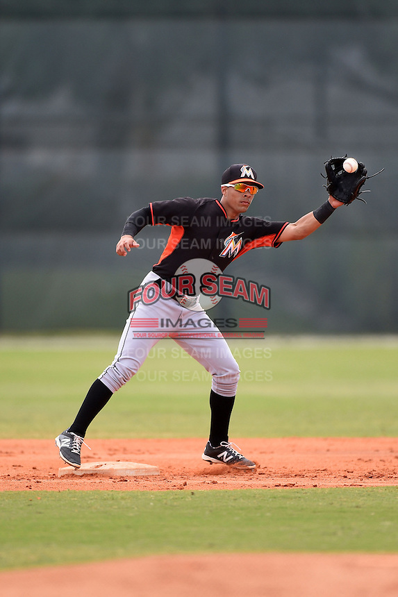 Miami Marlins second baseman Iramis Olivencia (1) during a minor league spring training game against the New York Mets on March 28, 2014 at the Roger Dean Stadium Complex in Jupiter, Florida.  (Mike Janes/Four Seam Images)