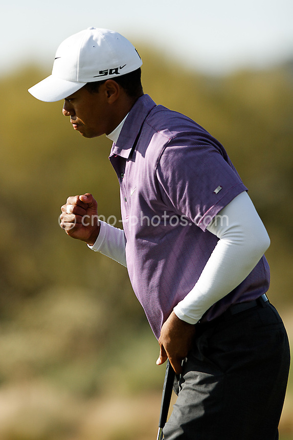 Feb 23, 2008; Marana, AZ, USA; A mini-Tiger fist-pump appears after taking a 1-up lead on the 17th hole of his semifinal match against Henrik Stenson (not pictured) at the Accenture Match Play Championship at the Gallery Golf Club.