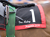 Tax Ruling's saddle cloth/