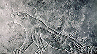 Assyria:  A dying lioness.  The Lion Hunt, Ninevah.  Palace of Ashurbanipal.  Photo '85.