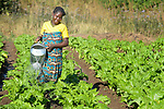 Fiskani Magawa waters her garden in Chibamu Jere, Malawi. Magawa, who is pregnant with her first child, gets support from the Maternal, Newborn and Child Health program of the Livingstonia Synod of the Church of Central Africa Presbyterian.