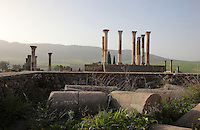The Capitoline Temple, built 218 AD on the site of an earlier shrine, with an altar in a courtyard in front of a 13-stepped platform with a tetrastyle Corinthian column temple, Volubilis, Northern Morocco. The temple was dedicated to Juno, Jupiter and Minerva and was the site of huge civic assemblies. It was reconstructed in 1955 and 1962. Volubilis was founded in the 3rd century BC by the Phoenicians and was a Roman settlement from the 1st century AD. Volubilis was a thriving Roman olive growing town until 280 AD and was settled until the 11th century. The buildings were largely destroyed by an earthquake in the 18th century and have since been excavated and partly restored. Volubilis was listed as a UNESCO World Heritage Site in 1997. Picture by Manuel Cohen