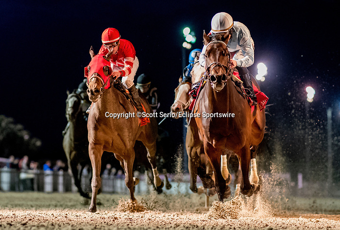 February 15, 2020: #1 Modernist and Junior Alvarado win the Risen Star Stakes Division II during Risen Star Stakes Day at Fair Grounds Race Course in New Orleans, Louisiana. Scott Serio/Eclipse Sportswire/CSM