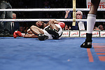 Quebec Canada bell centrel, Adoris Estevenson gano por ko a Dereck Edwards en el asalto 2