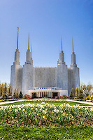 Mormon Temple Washington DC Architecture