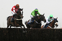 Race winner Romulus D'Artaix ridden by Robert Thornton jumps the last ahead of Nataani ridden by Timmy Murphy in the Colin Ruck-Nightingale Memorial Novices Handicap Chase - Horse Racing at Newbury Racecourse, Berkshire