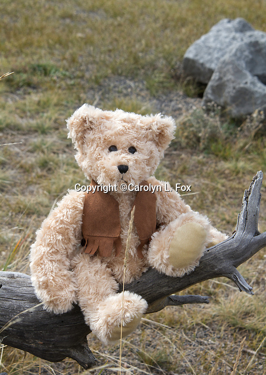 A teddy bear wearing a brown vest sits on the limb of a dead tree in Yellowstone National Park.
